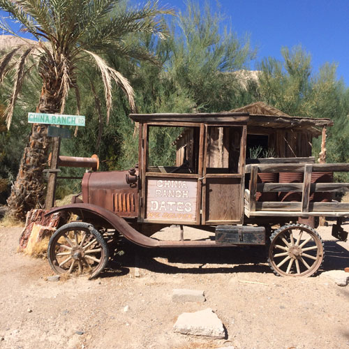 Visiting the China Ranch Date Farm – The Perfect SCD Destination