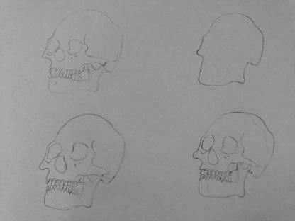 Bones-1