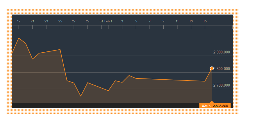 shanghai 500 16-2