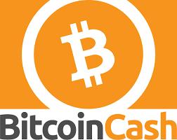 """""""Satoshi Nakamoto"""" si sta impossessando di Bitcoin Cash. Chi c'è dietro"""