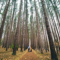 Trending Now: Lose (and Find) Yourself in Nature
