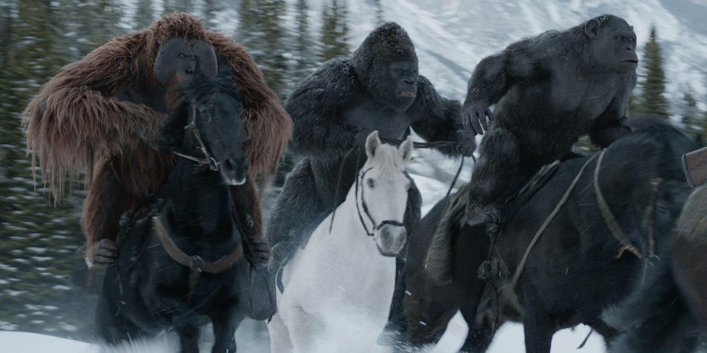 Risultati immagini per war for the planet of the apes