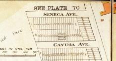 SenecaCayuga