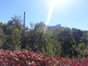 Betty Sutherland Trail (28)