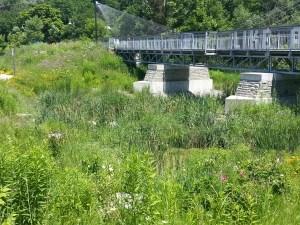 14. Bridge