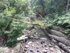 Vale of Avoca Yellow Creek