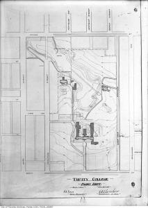 Trinity Bellwoods map, 1913