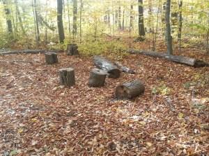 L'Amoreaux North Park Passmore Forest 3