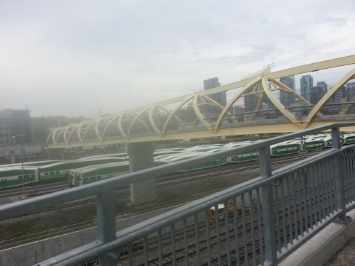 Puente de Luz 1