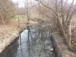 West Highland Creek