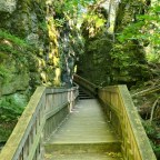 Scenes From Mono Cliffs Provincial Park