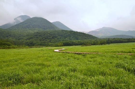 タデ原湿原