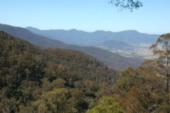 Bega country