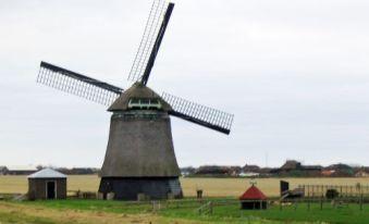 Holland 049PSC