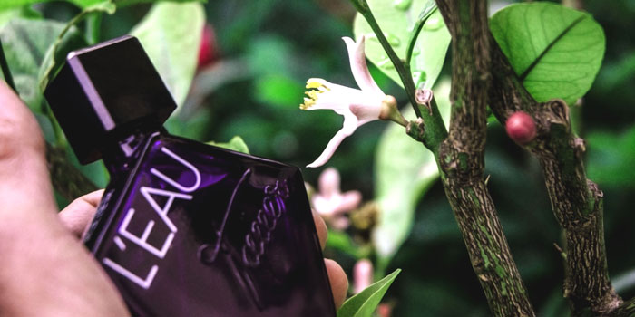 The Smell Test: L'Eau by Tauer Perfumes