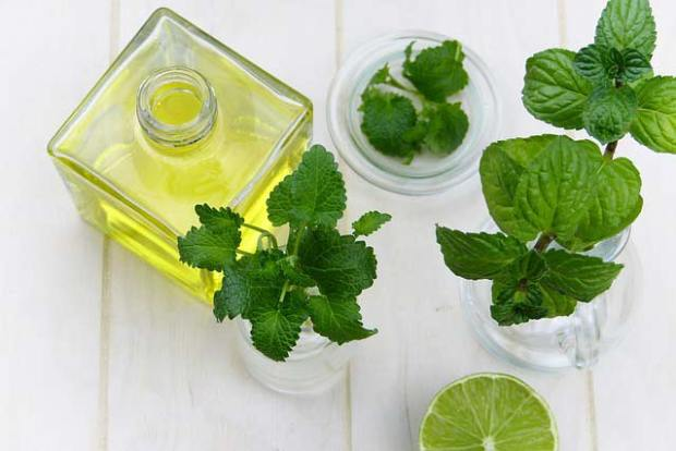 Cool Off With Peppermint, Peppermint, Benefits of Peppermint Oil, Peppermint Oil Uses, Peppermint Oil For Hot Flashes, Peppermint Essential Oil