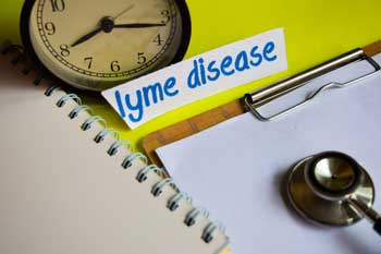 Lyme Disease, How Aromatherapy Can Make A Difference