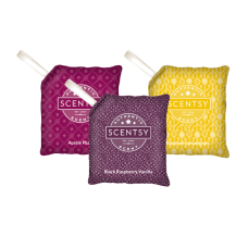 Scentsy Combo Pack