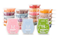 Buy Or Sell Scentsy Shop Online Or Join The Team
