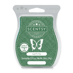just fir you scentsy wax bar