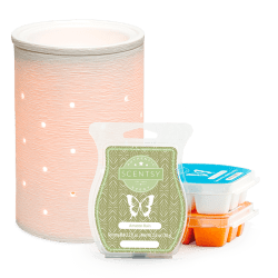 scentsy system 30 warmer bundle