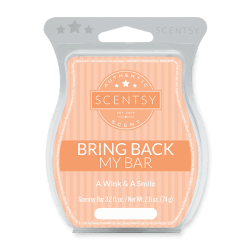 A Wink and A Smile Scentsy BBMB 2020