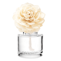 hibiscus pineapple dahlia darling scentsy fragrance flower