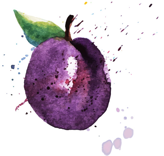 Plum-Watercolor