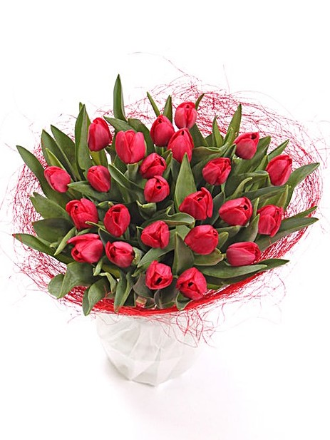 Red Tulip Hand Tied