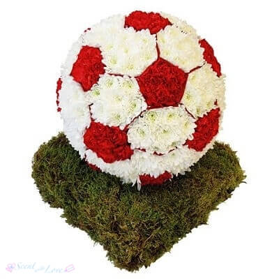 3D Football tribute