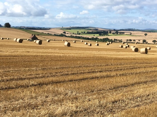 Harvest scene, straw bales: Brexit and land values photograph by Deb Roberts