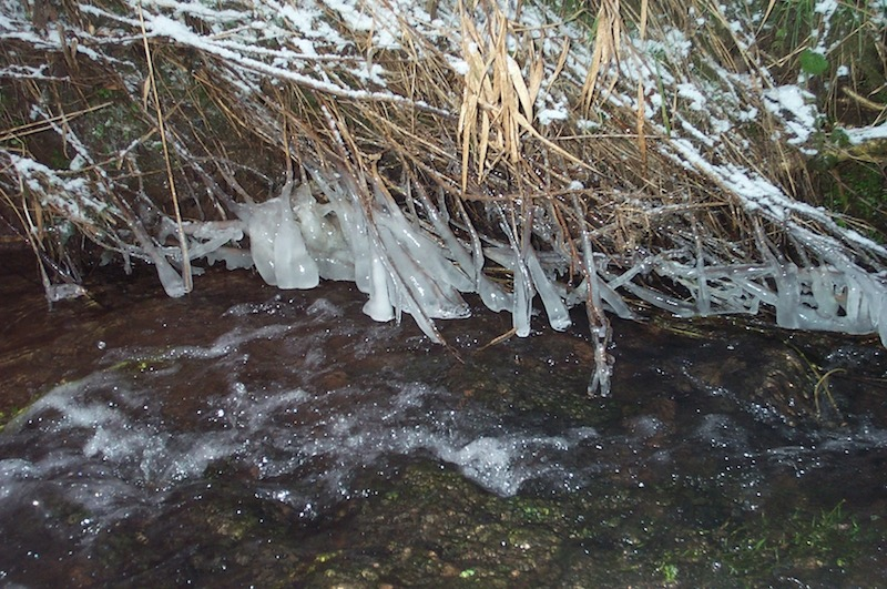 Melting ice drips into a foaming stream. Pond Cottage image Ray Perman