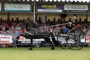 Breeder: R. de Vries-Baker, Hindeloopen Owner: Stal Chardon, Jorwert