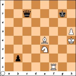 schaakpuzzel3