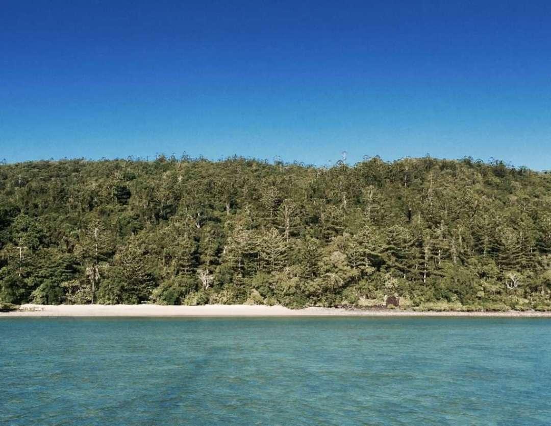 Joe's beach on Whitsunday island