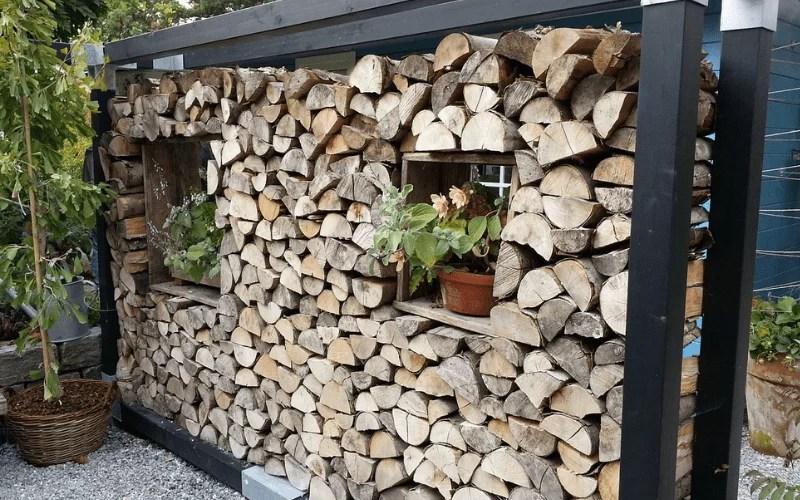 schaedlinge-im-Holzstapel-