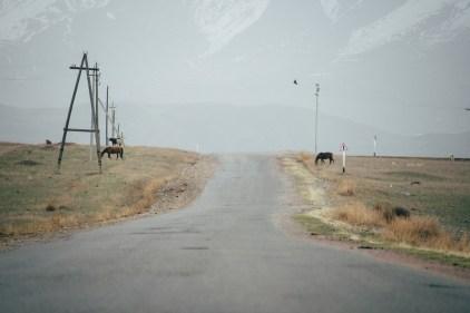 kirgisistan-999_b