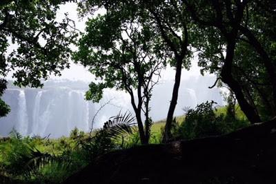 16.11. und 17.11. Abschied in Victoria Falls