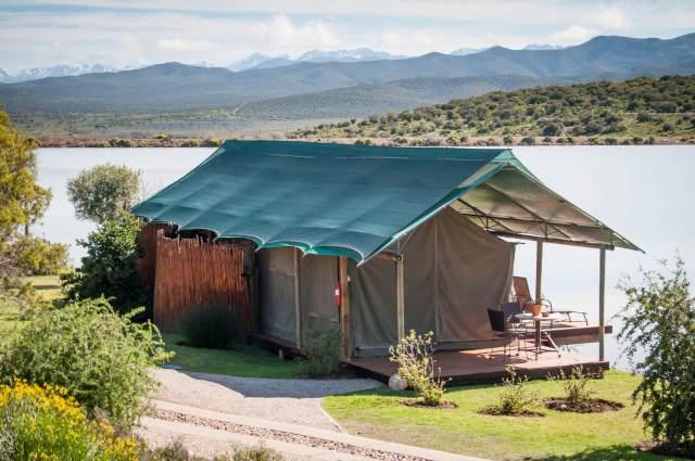 buffelsdrift game lodge accommodation in oudtshoorn luxury waterfront tents 21 1024x680 - Traumhafte Kapregion