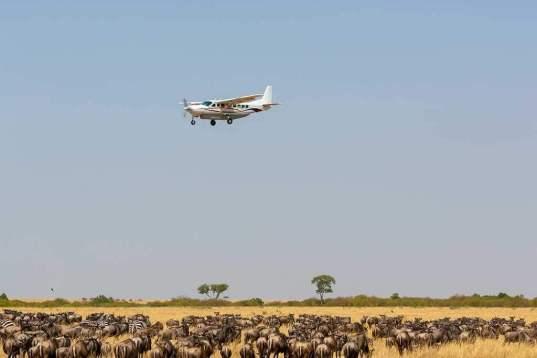Flugsafari in Tansania – Herzschlag der Wildnis