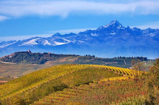 Piemont zur Trüffelsaison: Genussreise der Extraklasse