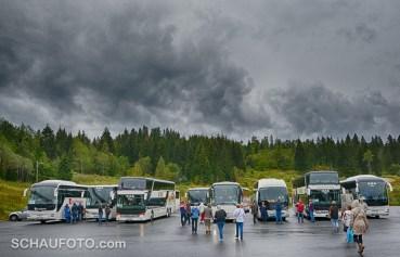 Zurück zu den Bussen!
