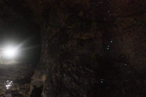 Glow Worm Tunnel 05