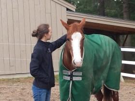 Sophia visiting Pippin- 2015