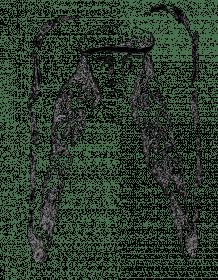 ps_259