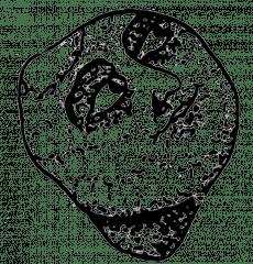 ps_207