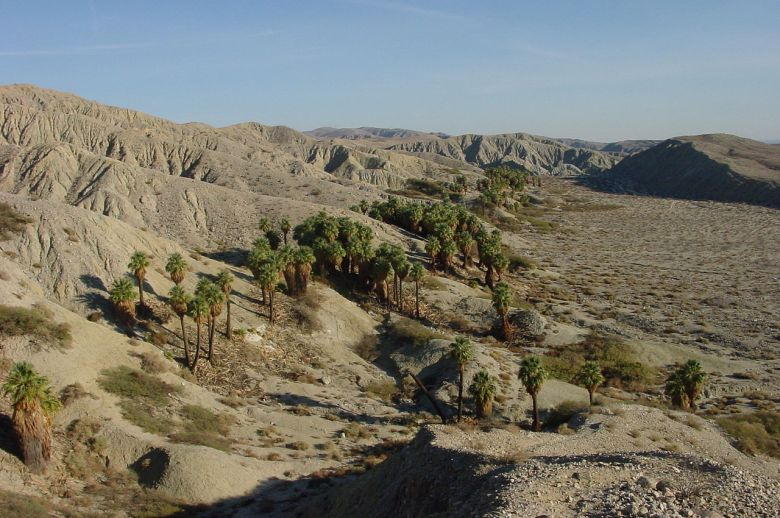 Image of desert landscape in Coachella Valley, Calif.