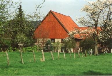 Dorfbilder Rogge Mai 1991023
