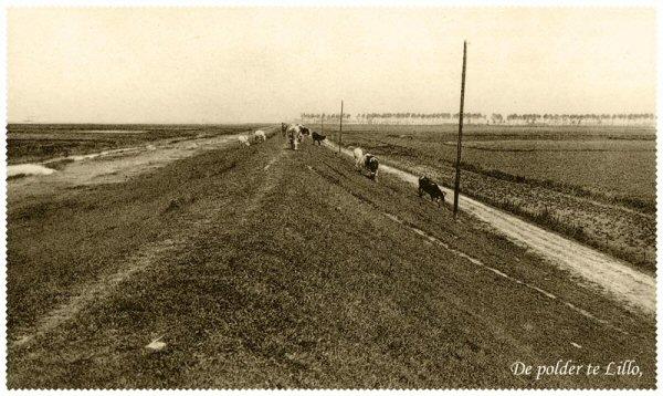 galgeschoor-en-dijk-1904