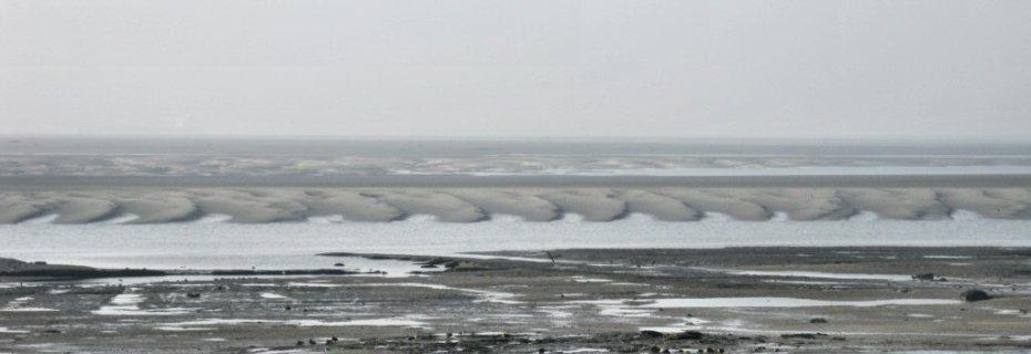 zandgolven-zimmermangeul-1